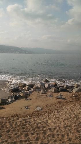 Puerto Vallarta 6